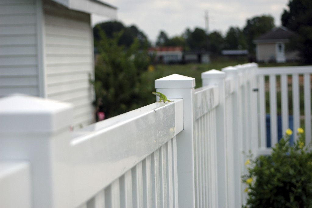 Vinyl Fence Installation Services